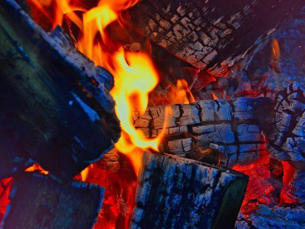 Tchibo Elektrogrill Test : Grillzangen test die besten grillzangen grillzangen im