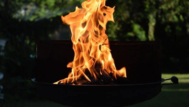 Weber Elektrogrill Flammen : Elektrogrill test die besten elektrogrills im vergleich