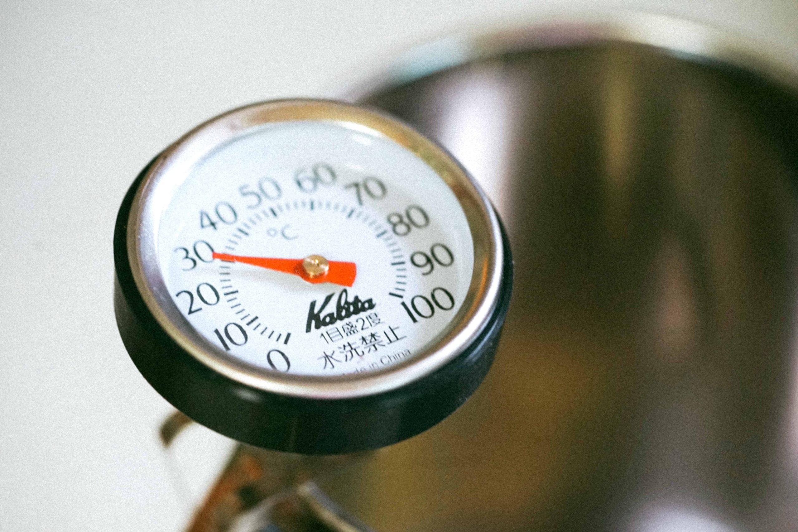 Grillthermometer: Test & Empfehlungen (01/21)