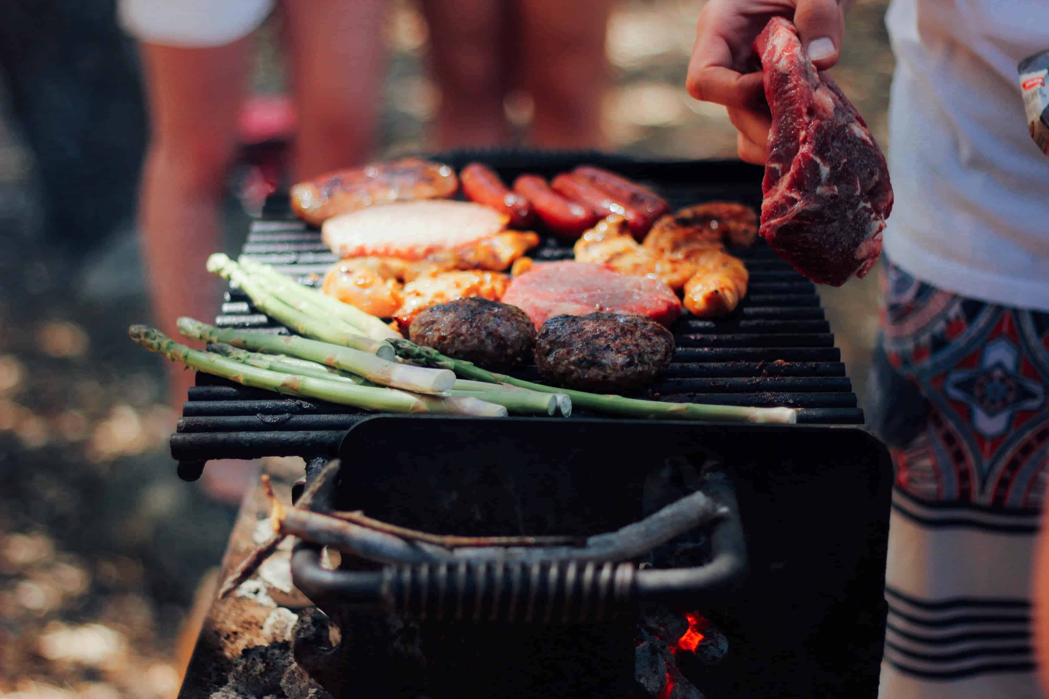Severin Elektrogrill Windschutz : Severin barbecue grill pg mit regler und gussplatte ca